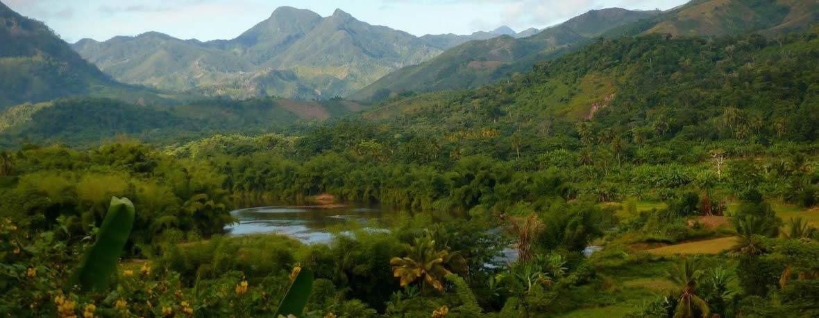 Ranomafana rain forest